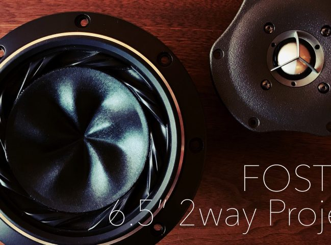 FOSTEX 6.5″ 2way Project Phase 1 (Project Launch)