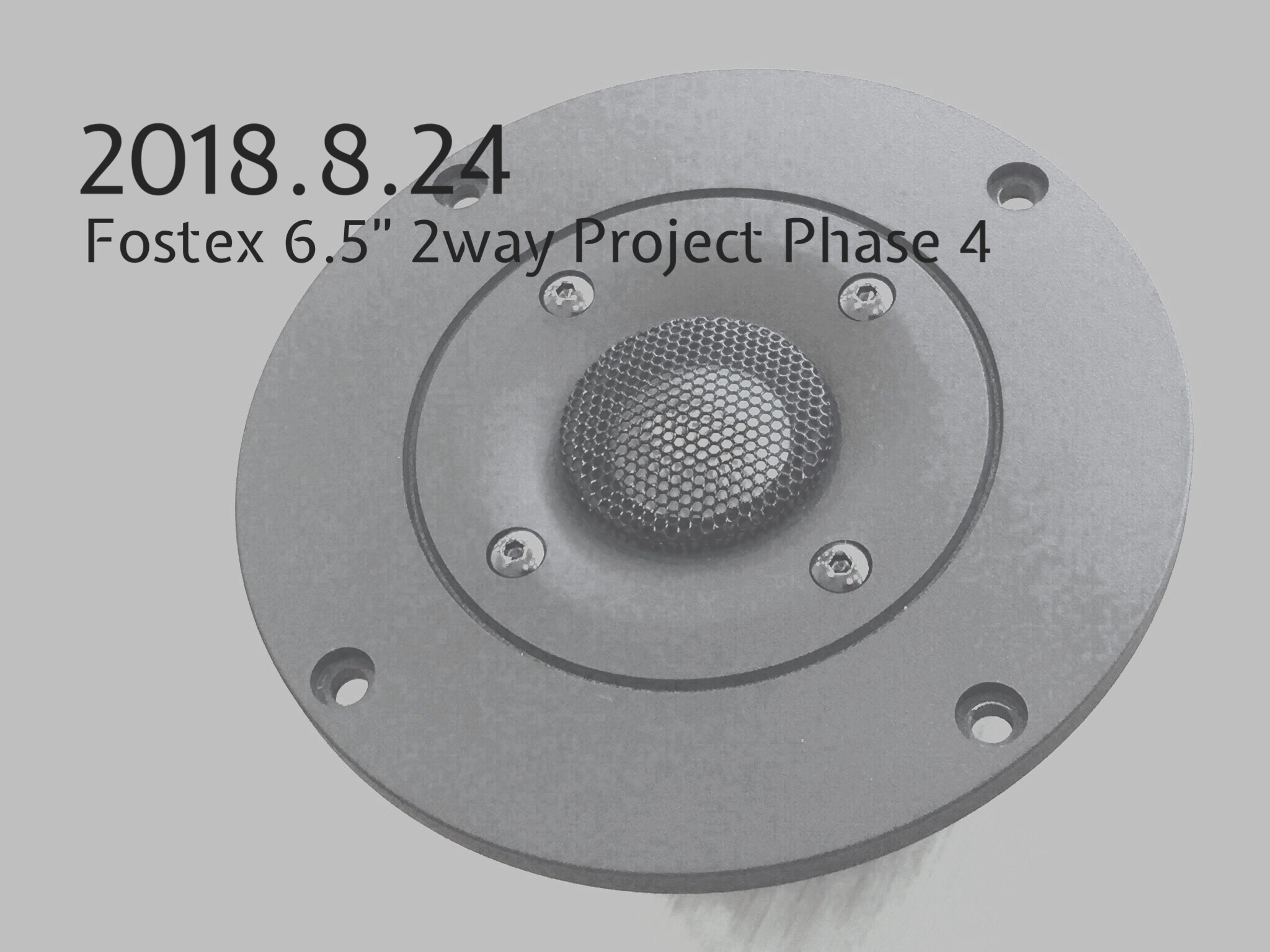 Fostex 6.5″ 2way Project Phase 4