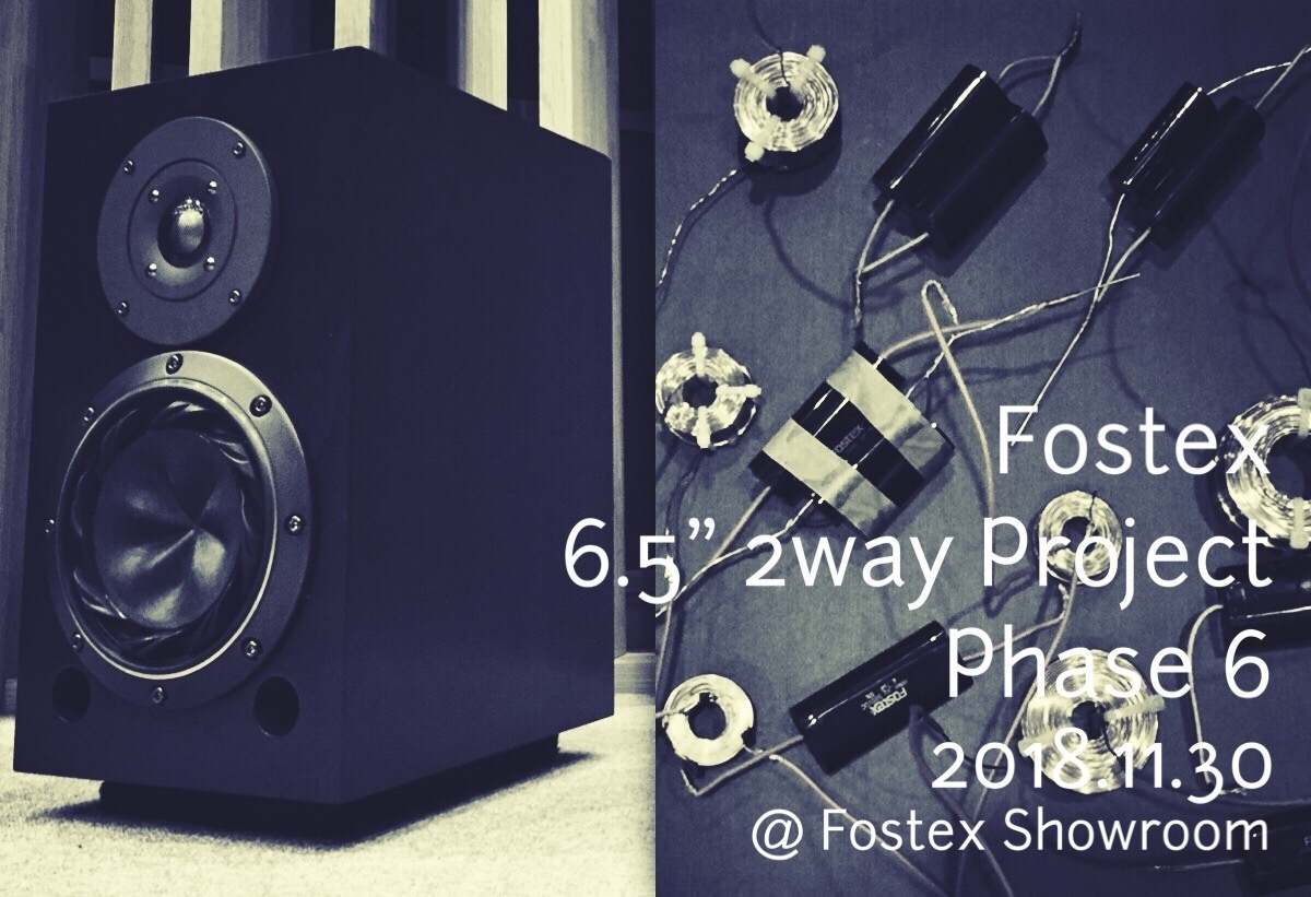 Fostex 6.5″ 2way Project Phase 6