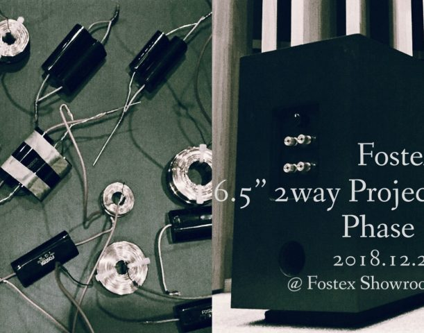 Fostex 6.5″ 2way Project Phase 7