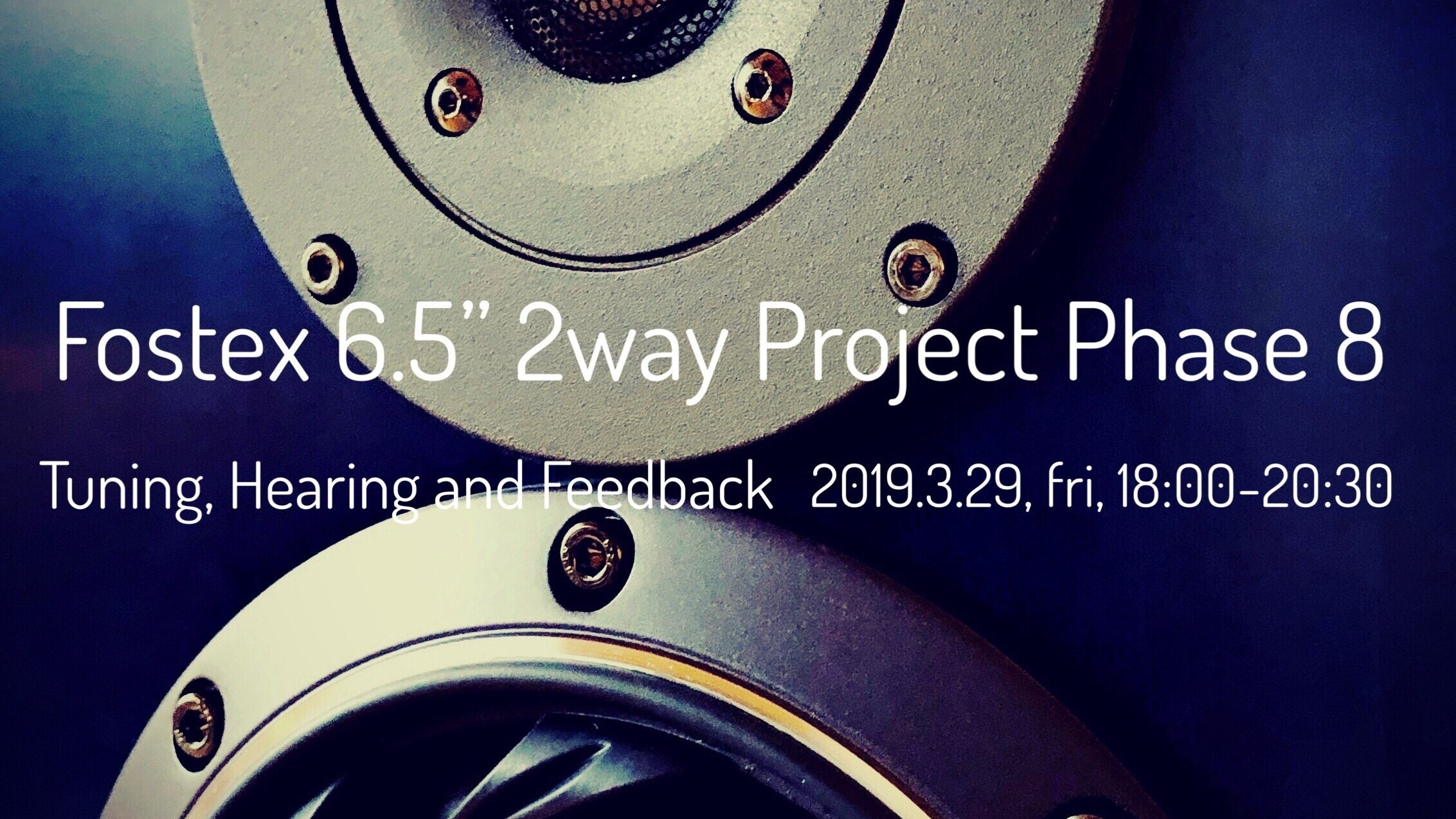 Fostex 6.5″ 2way Project Phase 8